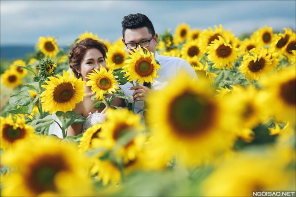 Ảnh cưới đẹp giữa mùa hoa hướng dương vàng rực rỡ ở Đà Lạt (1) tại Cưới hỏi trọn gói 365