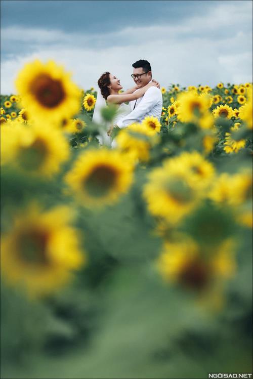 Ảnh cưới đẹp giữa mùa hoa hướng dương vàng rực rỡ ở Đà Lạt (4) tại Cưới hỏi trọn gói 365