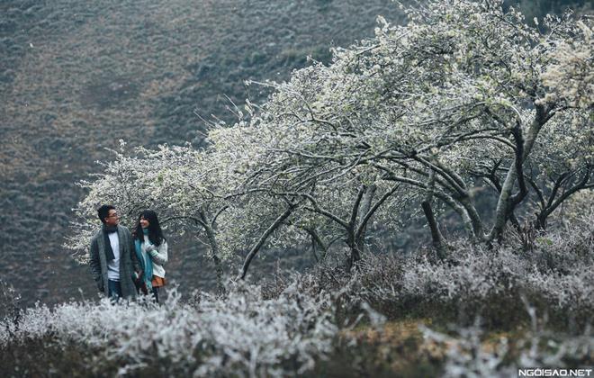 Ảnh cưới đẹp với băng tuyết của cặp đôi Sài Gòn tại Mộc Châu (01) tại Cưới hỏi trọn gói 365
