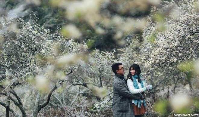 Ảnh cưới đẹp với băng tuyết của cặp đôi Sài Gòn tại Mộc Châu (09) tại Cưới hỏi trọn gói 365