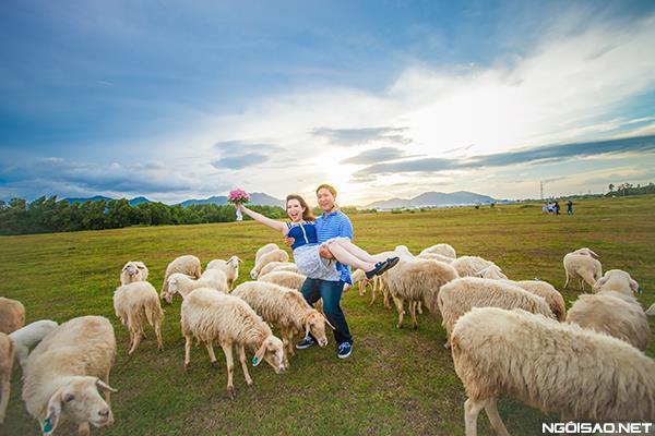 Ảnh cưới độc và lạ của cô dâu chú rể tươi trẻ cùng đàn cừu (02) tại Cưới hỏi trọn gói 365