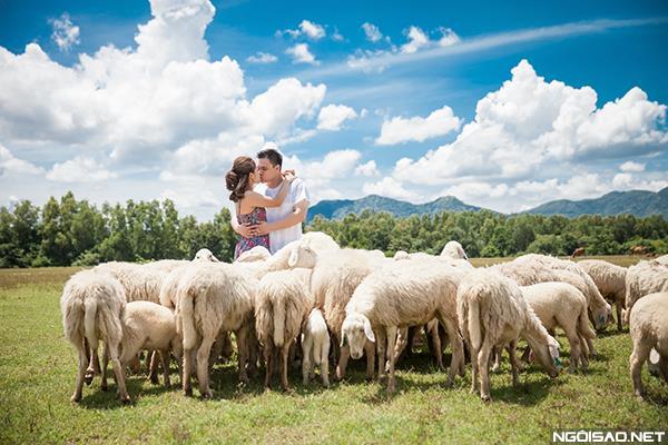 Ảnh cưới độc và lạ của cô dâu chú rể tươi trẻ cùng đàn cừu (04) tại Cưới hỏi trọn gói 365