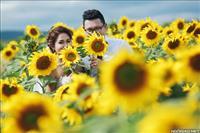 Cặp đôi chụp ảnh cưới tuyệt đẹp giữa mùa hoa Đà Lạt :