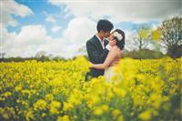 Ảnh cưới trên đồng cỏ mênh mông :