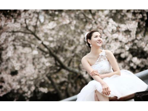 Hình ảnh đẹp Ảnh cưới tuyệt đẹp ở đảo Jeju mùa xuân