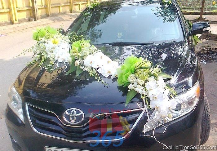 Cho thuê xe cưới 4 chỗ 7 chỗ màu đen kết hoa phông lan trắng để đón rước dâu ngày đám cưới X4C16 : Mẫu cưới hỏi trọn gói 365 của công ty dịch vụ trang trí nhà tiệc cưới hỏi đẹp rẻ uy tín ở tại quận Tân Phú Sài Gòn TPHCM Gò Vấp