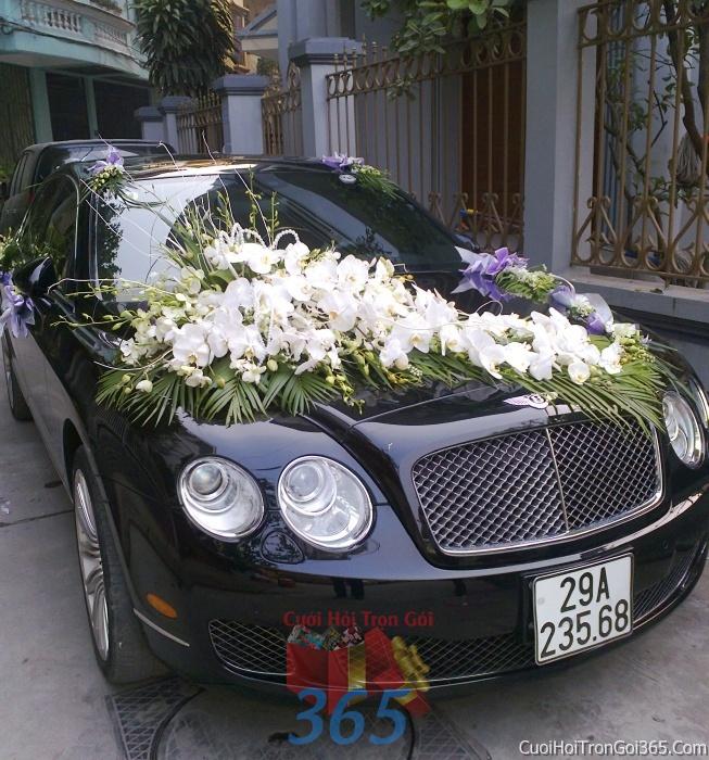 Cho thuê xe cưới 4 chỗ 7 chỗ màu đen kết hoa phông lan trắng để đón rước dâu ngày đám cưới X4C18 : Mẫu cưới hỏi trọn gói 365 của công ty dịch vụ trang trí nhà tiệc cưới hỏi đẹp rẻ uy tín ở tại quận Tân Phú Sài Gòn TPHCM Gò Vấp