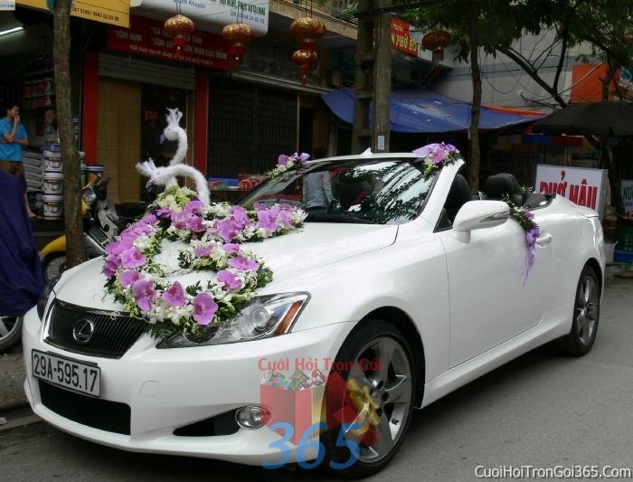 Cho thuê xe cưới 4 chỗ 7 chỗ màu trắng kết hoa lan hồ điệp trắng tím để đón rước dâu ngày đám cưới X4C06 : Mẫu cưới hỏi trọn gói 365 của công ty dịch vụ trang trí nhà tiệc cưới hỏi đẹp rẻ uy tín ở tại quận Tân Phú Sài Gòn TPHCM Gò Vấp