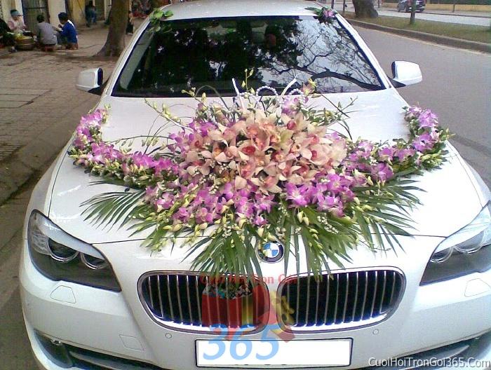 Cho thuê xe cưới 4 chỗ 7 màu trắng chỗ kết hoa phông lan tím để đón rước dâu ngày đám cướiX4C29 : Mẫu cưới hỏi trọn gói 365 của công ty dịch vụ trang trí nhà tiệc cưới hỏi đẹp rẻ uy tín ở tại quận Tân Phú Sài Gòn TPHCM Gò Vấp