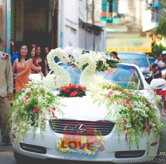 Cho thuê xe cưới 4 chỗ màu trắng kết đôi chim công rực rỡ từ hoa phong lan,hồng trắng đỏ để đón rước dâu ngày đám X4C39 : Mẫu cưới hỏi trọn gói 365 của công ty dịch vụ trang trí nhà tiệc cưới hỏi đẹp rẻ uy tín ở tại quận Tân Phú Sài Gòn TPHCM Gò Vấp