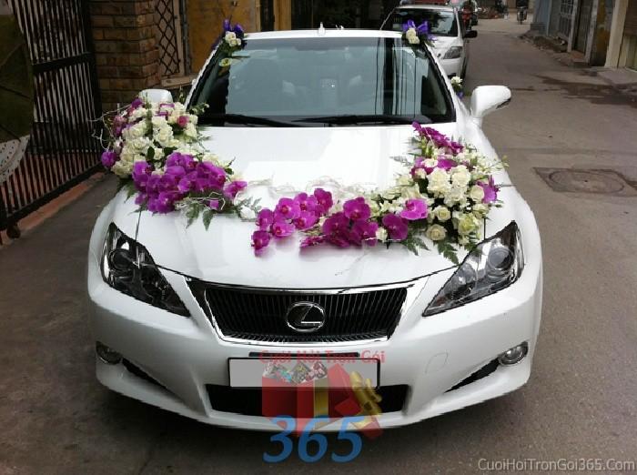 Cho thuê xe cưới 4 chỗ màu trắng kết lan hồ điệp tím và hoa hồng trắng lộng lẫy để đón rước dâu ngày đám X4C38 : Mẫu cưới hỏi trọn gói 365 của công ty dịch vụ trang trí nhà tiệc cưới hỏi đẹp rẻ uy tín ở tại quận Tân Phú Sài Gòn TPHCM Gò Vấp
