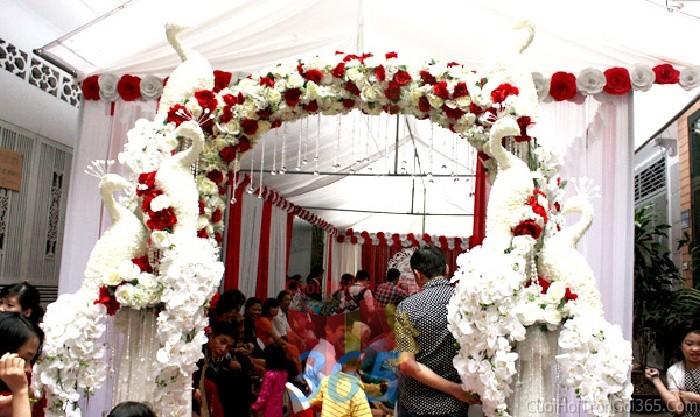 Cổng cưới hoa vải màu trắng đỏ lỗng lẫy với các chú chim công rực rỡ  hình mái cong cho lễ vu quy, ăn hỏi, tân hôn, đám CHV11 : Mẫu cưới hỏi trọn gói 365 của công ty dịch vụ trang trí nhà tiệc cưới hỏi đẹp rẻ uy tín ở tại quận Tân Phú Sài Gòn TPHCM Gò Vấp