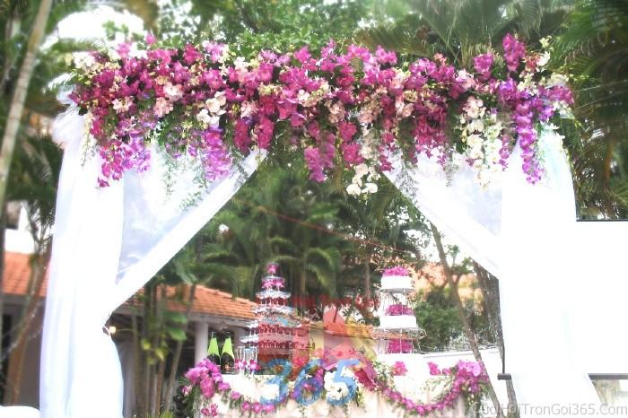 Cổng cưới kết hoa tươi tông tím lãng mạn  từ phong lan và vải voan trắng cho lễ ăn hỏi, đính hôn, đám CHT36 : Mẫu cưới hỏi trọn gói 365 của công ty dịch vụ trang trí nhà tiệc cưới hỏi đẹp rẻ uy tín ở tại quận Tân Phú Sài Gòn TPHCM Gò Vấp