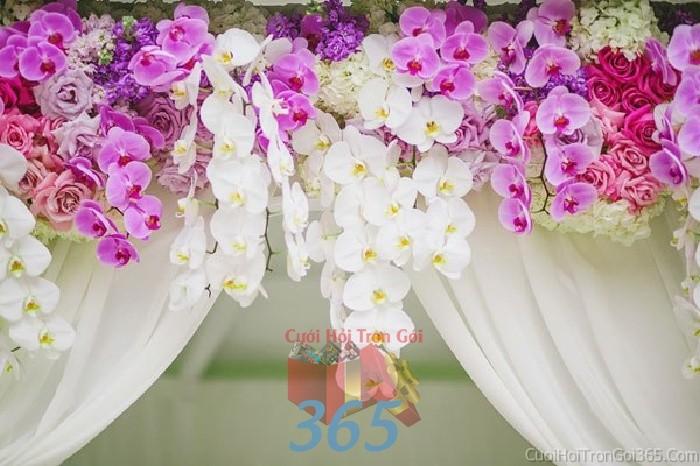 Cổng cưới kết hoa tươi tông trắng tím tinh tế, sang trọn từ hoa phong lan hồ điệp rực rỡ cho lễ ăn hỏi, đính hôn, đám CHT28 : Mẫu cưới hỏi trọn gói 365 của công ty dịch vụ trang trí nhà tiệc cưới hỏi đẹp rẻ uy tín ở tại quận Tân Phú Sài Gòn TPHCM Gò Vấp