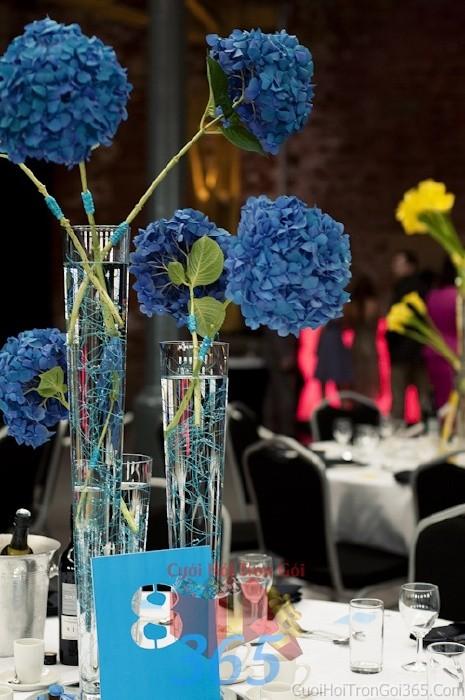Lọ hoa thủy tinh cao để bàn tông xanh dương giản dị với các đóa cẩm tú cầu cho lễ cưới, ăn hỏi, đính hôn để trang trí nhà ngày cướiHDB25 : Mẫu cưới hỏi trọn gói 365 của công ty dịch vụ trang trí nhà tiệc cưới hỏi đẹp rẻ uy tín ở tại quận Tân Phú Sài Gòn TPHCM Gò Vấp