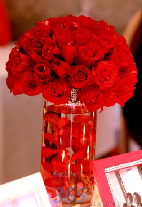 Lọ hoa thủy tinh cao sáng để bàn tông đỏ rực rỡ cho lễ cưới, ăn hỏi, đính hôn để trang trí nhà ngày cướiHDB22 : Mẫu cưới hỏi trọn gói 365 của công ty dịch vụ trang trí nhà tiệc cưới hỏi đẹp rẻ uy tín ở tại quận Tân Phú Sài Gòn TPHCM Gò Vấp
