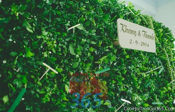 Phông cưới backdrop chụp hình đám cưới ngày lễ ăn hỏi làm bằng hoa tươi tông màu xanh ngọt BDNH30 : Mẫu cưới hỏi trọn gói 365 của công ty dịch vụ trang trí nhà tiệc cưới hỏi đẹp rẻ uy tín ở tại quận Tân Phú Sài Gòn TPHCM Gò Vấp