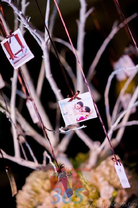 Phụ kiện đám cưới cây khô trang trí hình cưới dùng để trang trí bàn ký tên đón khách, không gian tiệc cưới nhà PKC44 : Mẫu cưới hỏi trọn gói 365 của công ty dịch vụ trang trí nhà tiệc cưới hỏi đẹp rẻ uy tín ở tại quận Tân Phú Sài Gòn TPHCM Gò Vấp
