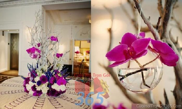 Phụ kiện đám cưới lọ hoa thủy tinh lan hồ điệp dùng để trang trí bàn ký tên đón khách, không gian tiệc cưới nhà PKC64 : Mẫu cưới hỏi trọn gói 365 của công ty dịch vụ trang trí nhà tiệc cưới hỏi đẹp rẻ uy tín ở tại quận Tân Phú Sài Gòn TPHCM Gò Vấp