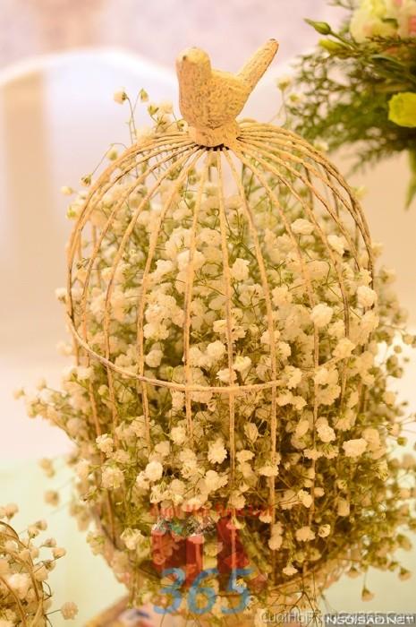 Phụ kiện đám cưới lồng chim chứa hoa pi trắng dùng để trang trí bàn ký tên đón khách, không gian tiệc cưới nhà PKC67 : Mẫu cưới hỏi trọn gói 365 của công ty dịch vụ trang trí nhà tiệc cưới hỏi đẹp rẻ uy tín ở tại quận Tân Phú Sài Gòn TPHCM Gò Vấp