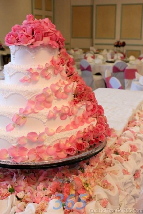 Trang trí bánh kem tông trắng hồng dễ thương với hoa hoa hồng, cánh hoa hồng tươi tắn cho sân khấu tiệc nhà hàng ngày đám cướiTRBC25 : Mẫu cưới hỏi trọn gói 365 của công ty dịch vụ trang trí nhà tiệc cưới hỏi đẹp rẻ uy tín ở tại quận Tân Phú Sài Gòn TPHCM Gò Vấp