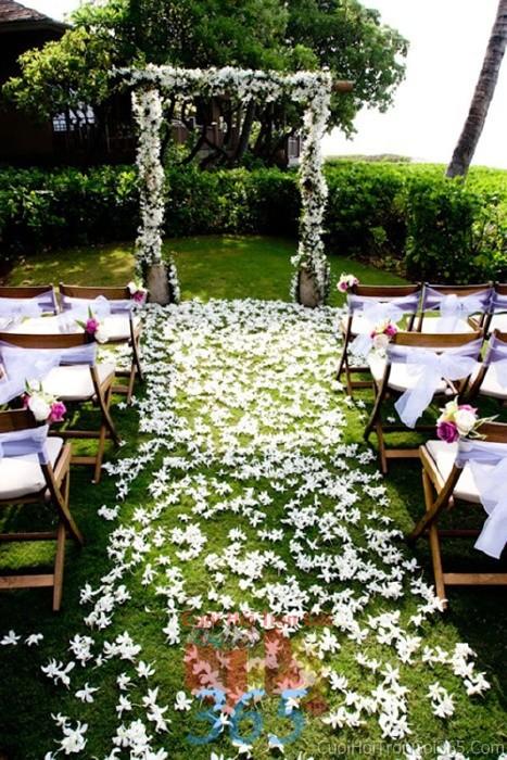 Trang trí lối đi trắng từ những cánh hoa lan trắng trải dài đường đi sân khấu đón khách, không gian làm lễ cho tiệc cưới tại nhà hàng và ngoài LDNH16 : Mẫu cưới hỏi trọn gói 365 của công ty dịch vụ trang trí nhà tiệc cưới hỏi đẹp rẻ uy tín ở tại quận Tân Phú Sài Gòn TPHCM Gò Vấp