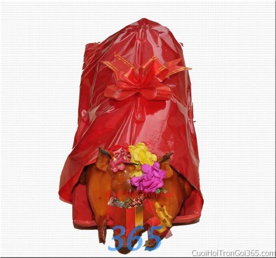 Mâm quả cưới hỏi heo sữa quay trọn gói cho nghi lễ gia tiên ăn hỏi đám  MQ26 : Mẫu cưới hỏi trọn gói 365 của công ty dịch vụ trang trí nhà tiệc cưới hỏi đẹp rẻ uy tín ở tại quận Tân Phú Sài Gòn TPHCM Gò Vấp