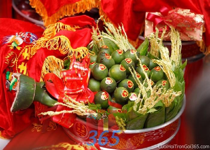 Mâm quả cưới hỏi trầu cau kết đẹp trọn gói cho nghi lễ gia tiên ăn hỏi ngày đám  MQ29 : Mẫu cưới hỏi trọn gói 365 của công ty dịch vụ trang trí nhà tiệc cưới hỏi đẹp rẻ uy tín ở tại quận Tân Phú Sài Gòn TPHCM Gò Vấp