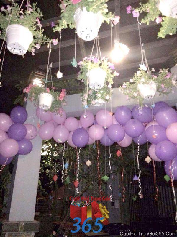Trang trí chi tiết trần nhà với bong bóng và các chậu hoa nhỏ xinh trong lễ đính hôn, ăn hỏi ngày  CTN26 : Mẫu cưới hỏi trọn gói 365 của công ty dịch vụ trang trí nhà tiệc cưới hỏi đẹp rẻ uy tín ở tại quận Tân Phú Sài Gòn TPHCM Gò Vấp